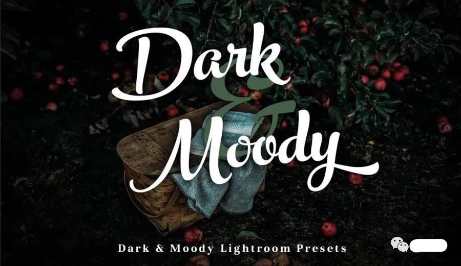 精选12款Lightroom 高级黑暗风格冷色调LR预设效果 免费下载插图
