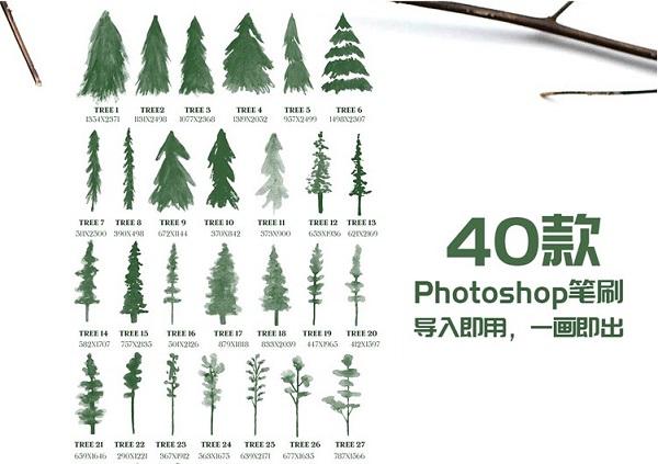 【笔刷】水彩立面树木松树笔刷剪影元素装饰插画图片设计ABR笔触设计素材插图