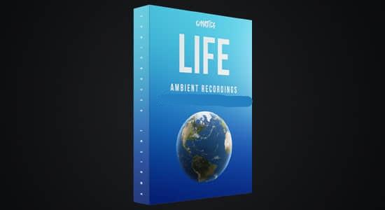 音效-海洋瀑布溪流水声雷电下雨生活市场环境氛围音效 LIFE – Ambient Recordings插图