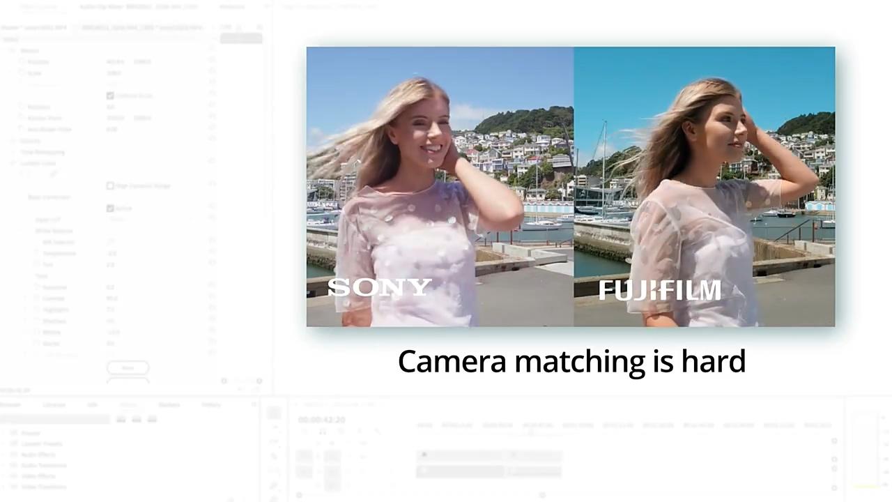 达芬奇插件-摄像机色彩空间匹配调色插件 CineMatch v1.03 Win插图